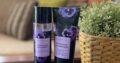Imported Bath and bodyworks fragrance/Body lotion/Shower gel for sale