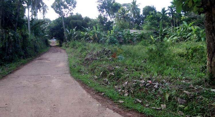 Land for Sale in Badalgama