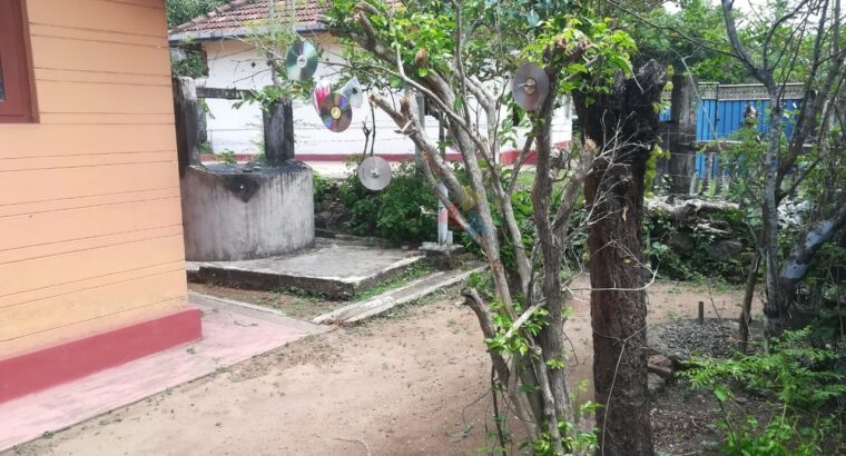 Small House with Land for Sale