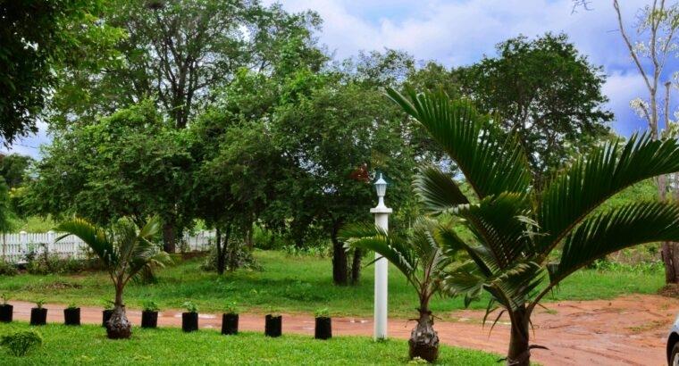 Bungalow For Rent Anuradhapura