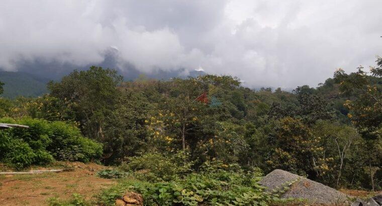 Land for Sale In Belihuloya
