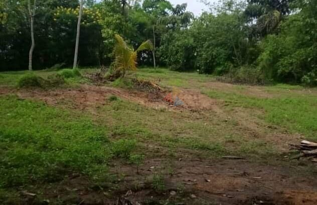Land For Sale In Kandy