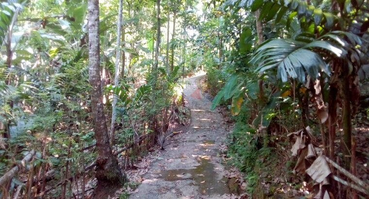 Land For Sale In Kegalle