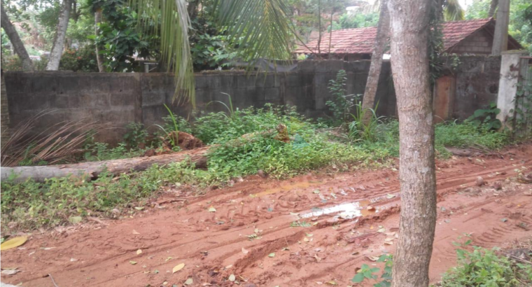 Land For Sale In Dikwella