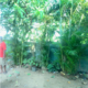 House For Sale In Angoda