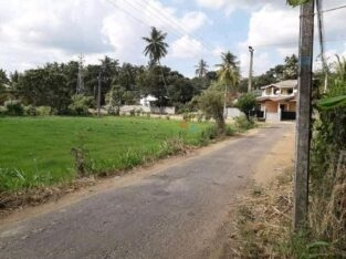 Land For Sale Kurunegala