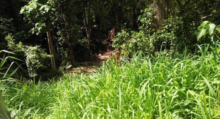 Land For Sale In Galagedara