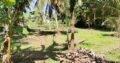 Land For Sale In Divulapitiya