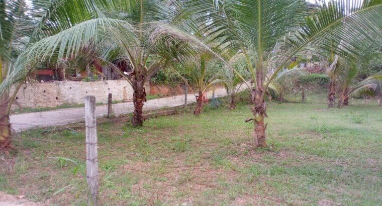 Land For Sale In Kiribathgoda