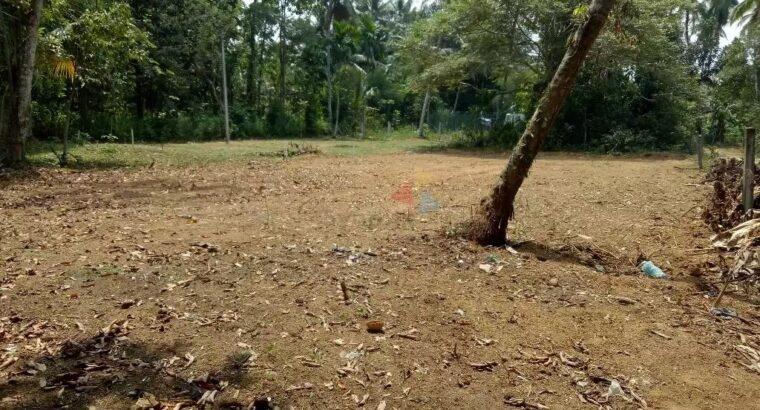 Land For Sale In Kirillawala