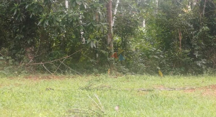 Land For Sale In Abaraluwa