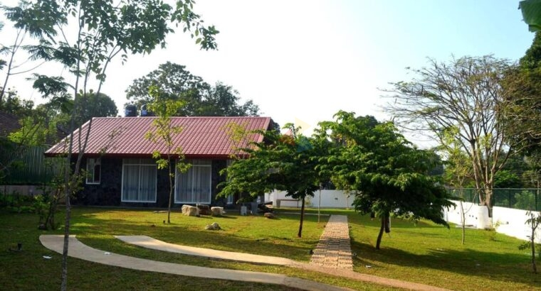 Domestic And Commercial Property For Rent In Digana