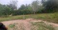 Land For Sale In Raddolugama