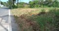 Land For Sale In Wattala