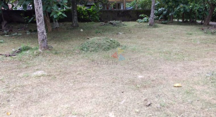 Land For Sale In Katana