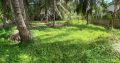 Land For Sale In Kerawalapitiya