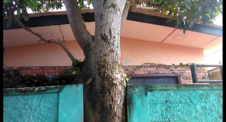 House For Sale In Mattakkuliya