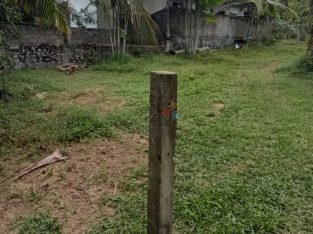 Land For Sale In Gonapola