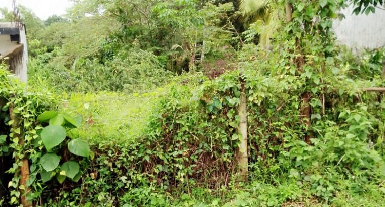 Land For Sale In Meepe Mawathagama