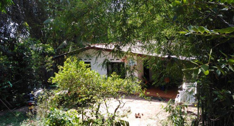 Land For Sale In Welisara