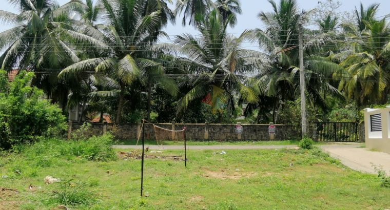 Land For Sale In Kochchikade