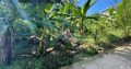 Land For Sale In Pelmadulle