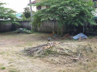10 Perch Land for Sale in Mount Lavinia